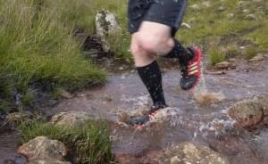 stream-trail